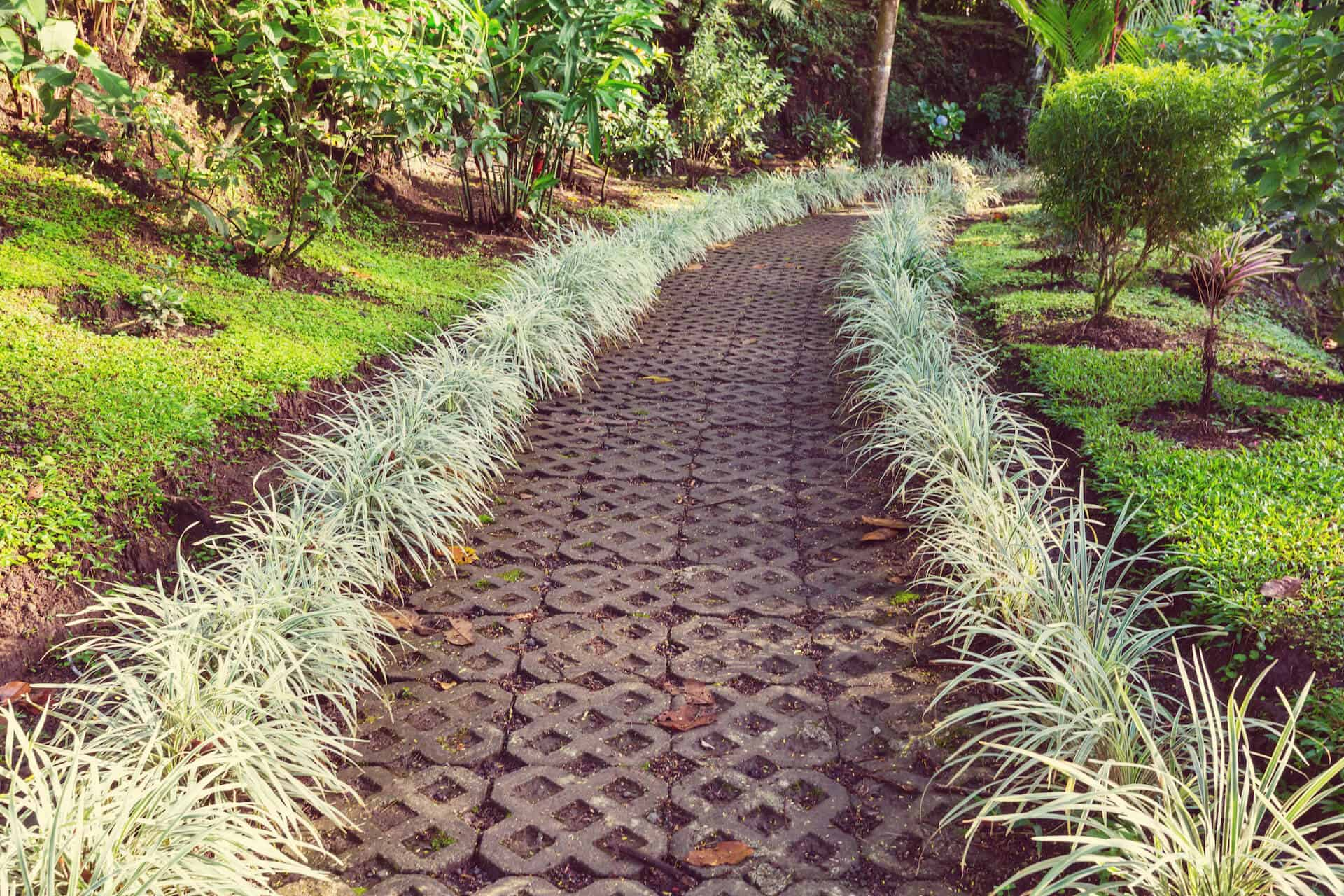 Garden Edging Ideas to Spruce Up Your Space