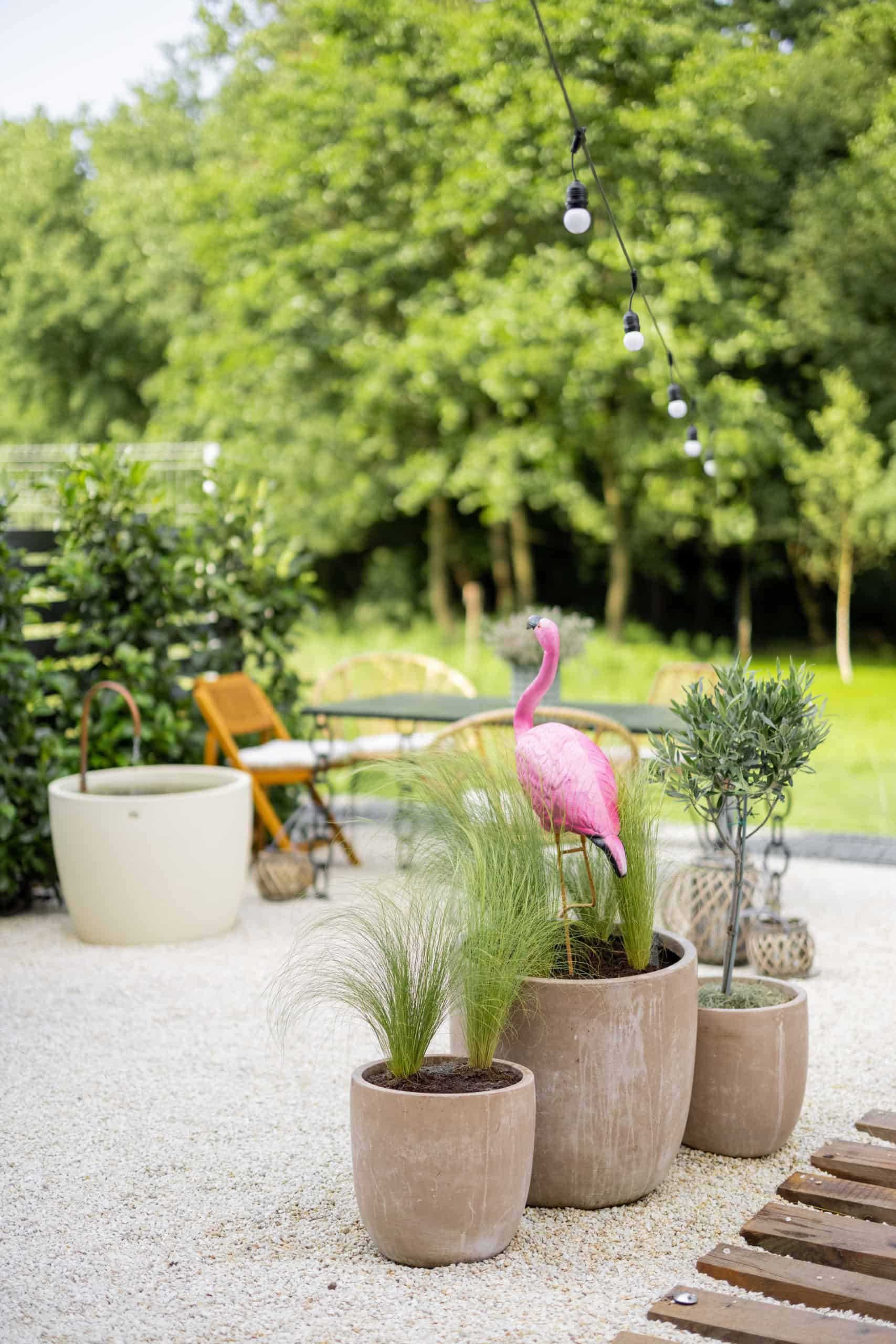 Garden Makeover On A Small Budget? Yes, You Can!